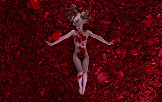 american beauty still